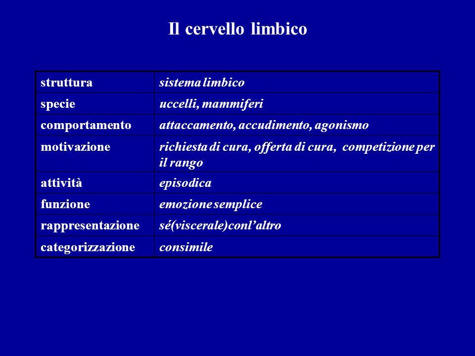 Il cervello limbico struttura sistema limbico specie