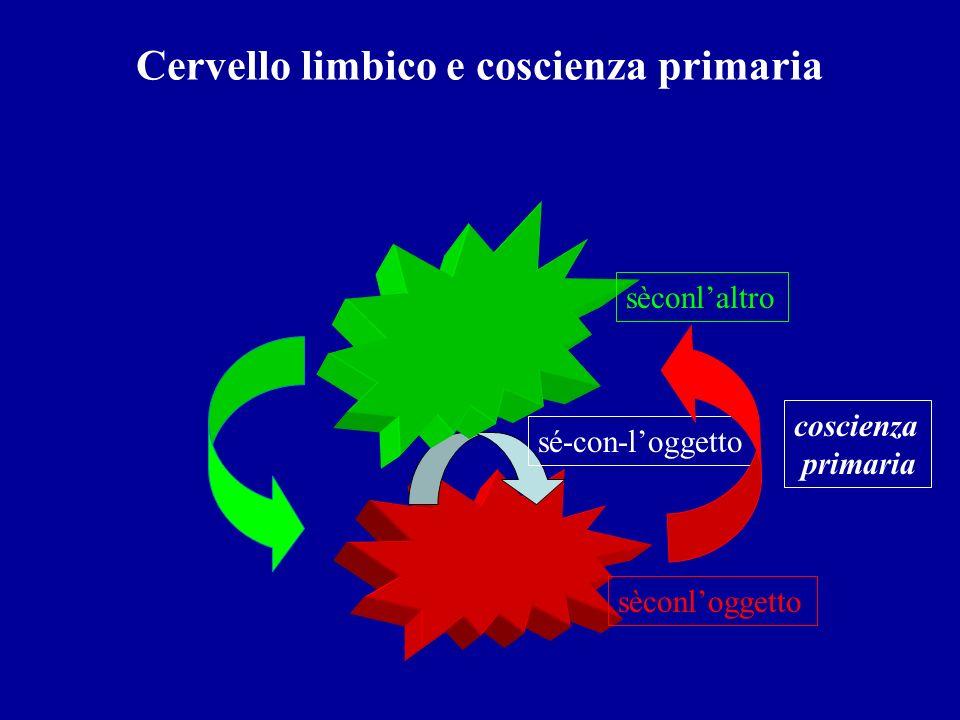 Cervello limbico e coscienza primaria