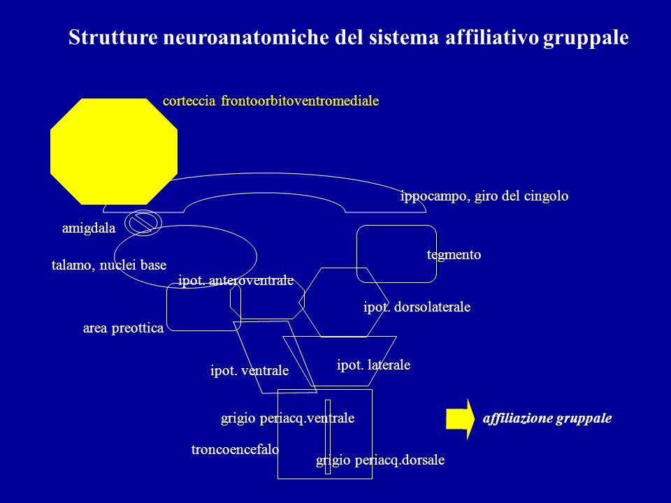 Strutture neuroanatomiche del sistema affiliativo gruppale