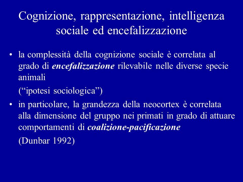Cognizione, rappresentazione, intelligenza sociale ed encefalizzazione