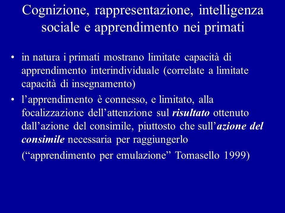 Cognizione, rappresentazione, intelligenza sociale e apprendimento nei primati