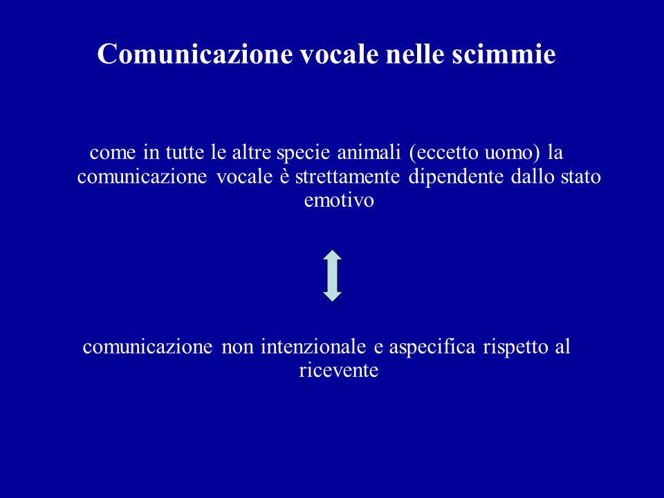 Comunicazione vocale nelle scimmie