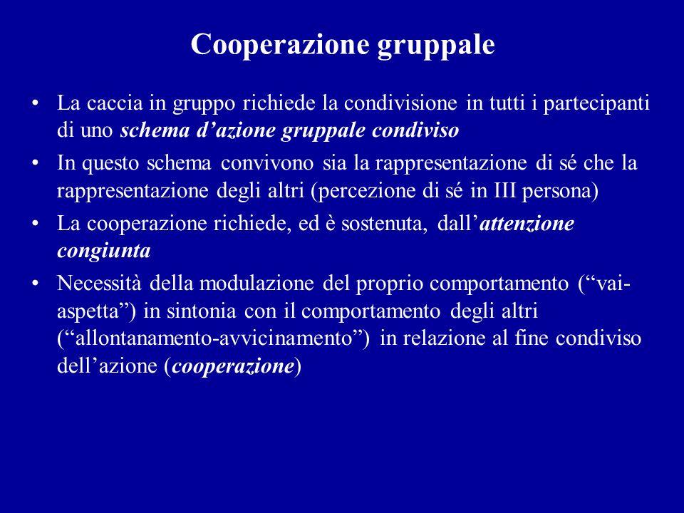 Cooperazione gruppale