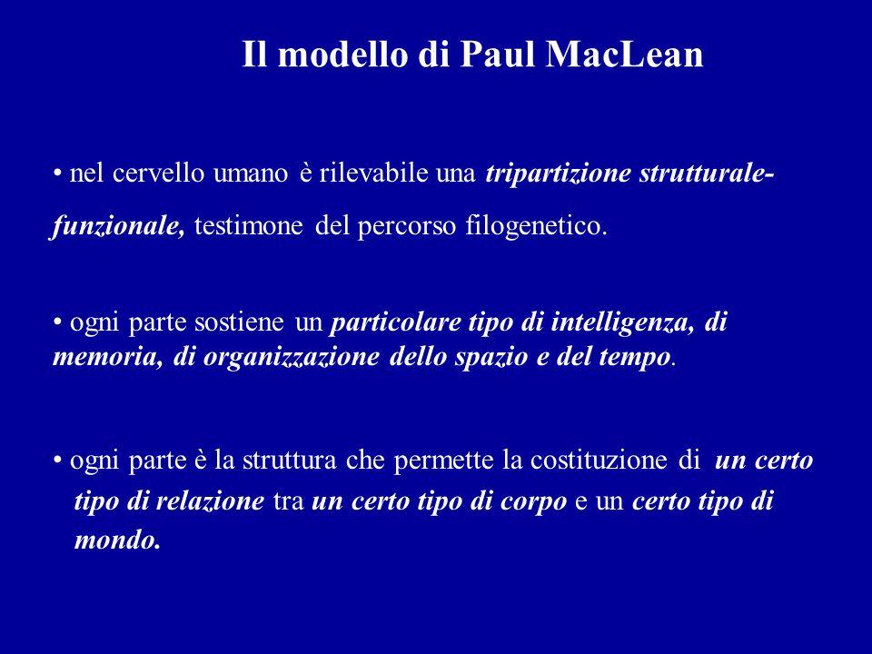 Il modello di Paul MacLean