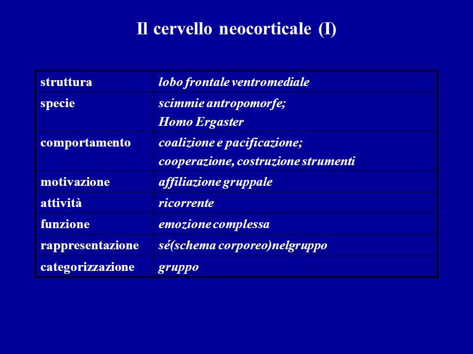 Il cervello neocorticale (I)