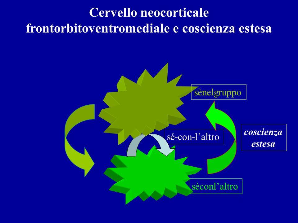 Cervello neocorticale frontorbitoventromediale e coscienza estesa