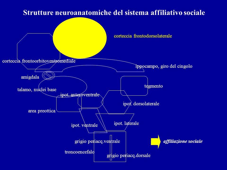 Strutture neuroanatomiche del sistema affiliativo sociale