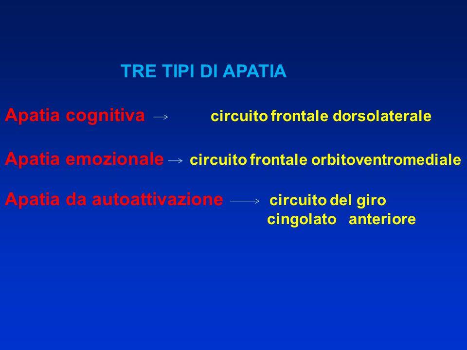 Apatia cognitiva circuito frontale dorsolaterale