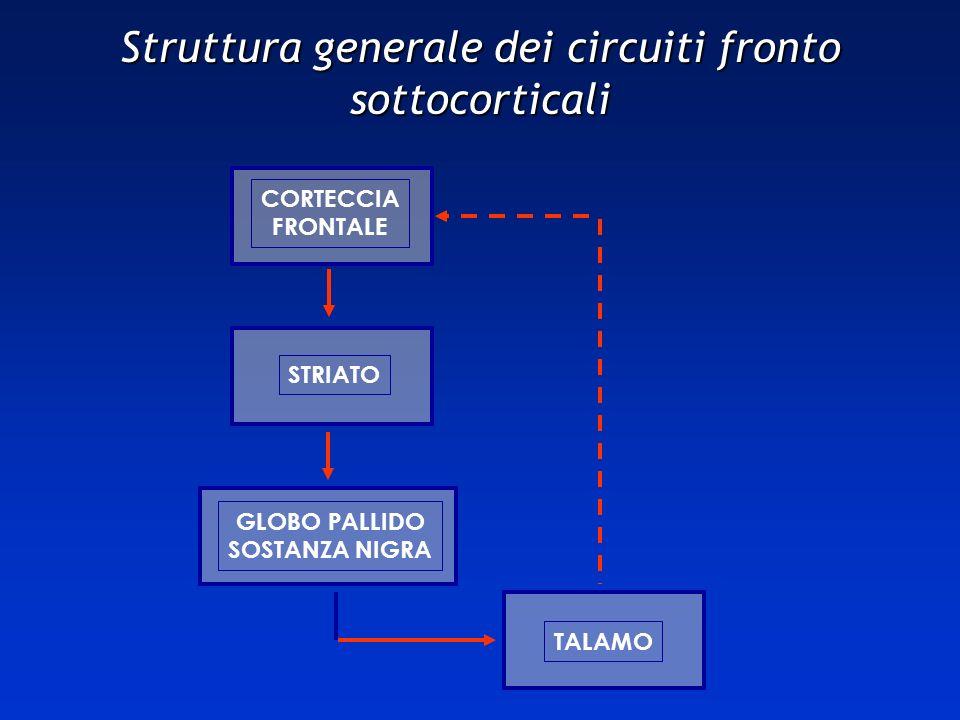 Struttura generale dei circuiti fronto sottocorticali