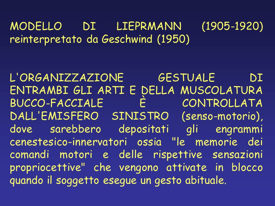 MODELLO DI LIEPRMANN (1905-1920) reinterpretato da Geschwind (1950)
