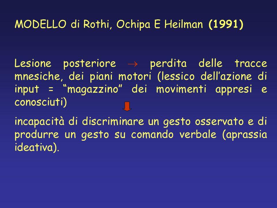 MODELLO di Rothi, Ochipa E Heilman (1991)
