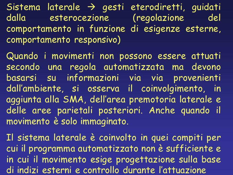 Sistema laterale  gesti eterodiretti, guidati dalla esterocezione (regolazione del comportamento in funzione di esigenze esterne, comportamento responsivo)