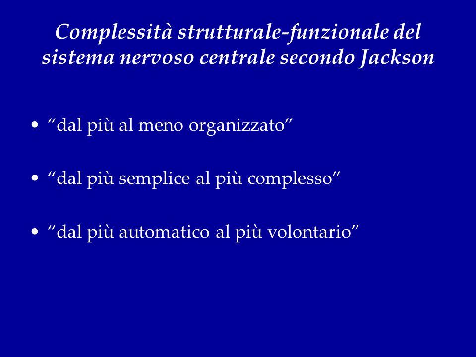 Complessità strutturale-funzionale del sistema nervoso centrale secondo Jackson