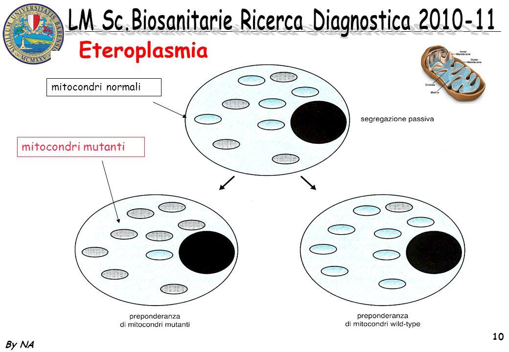Eteroplasmia mitocondri normali mitocondri mutanti By NA