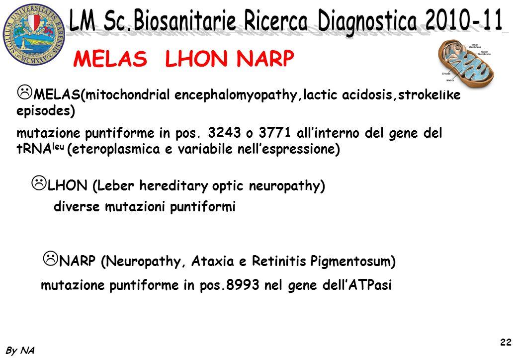 MELAS LHON NARP MELAS(mitochondrial encephalomyopathy,lactic acidosis,strokelike episodes)
