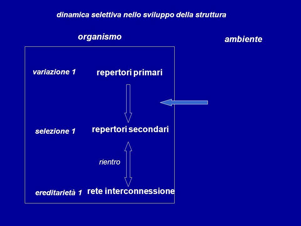 rete interconnessione