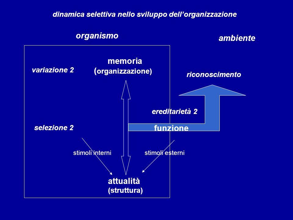 organismo ambiente memoria (organizzazione) funzione attualità