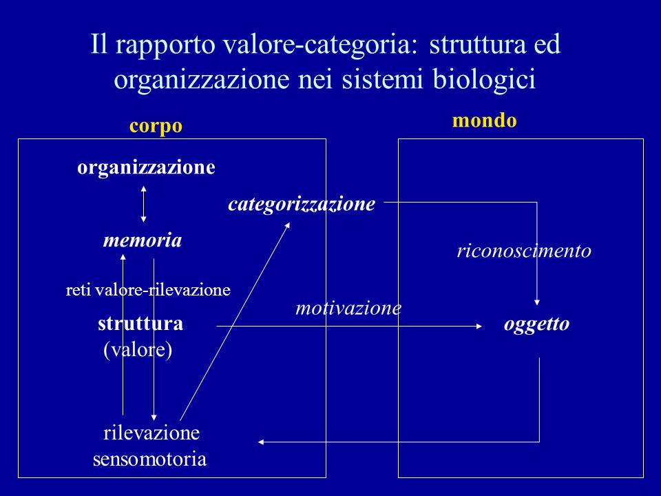 Il rapporto valore-categoria: struttura ed organizzazione nei sistemi biologici
