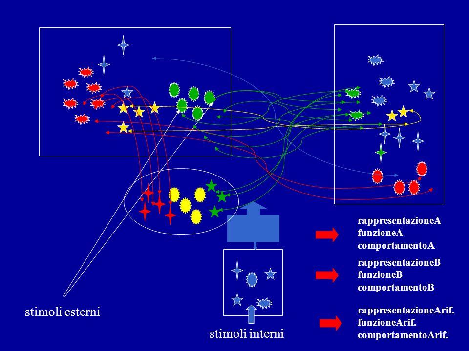 stimoli esterni stimoli interni rappresentazioneA funzioneA