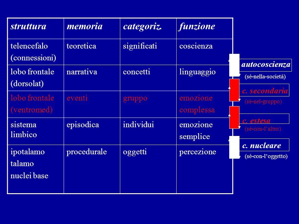 struttura memoria categoriz. funzione telencefalo (connessioni)