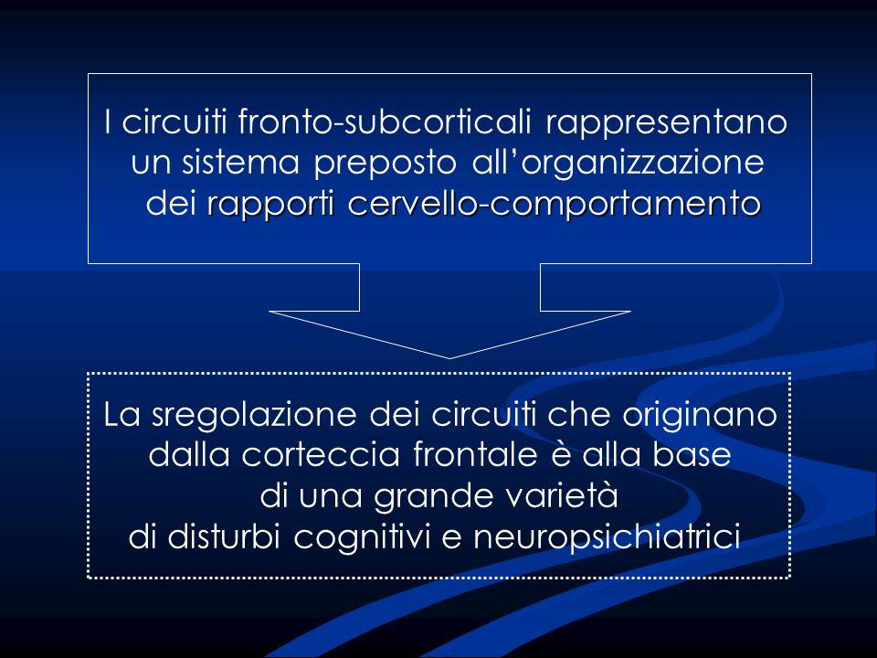 I circuiti fronto-subcorticali rappresentano