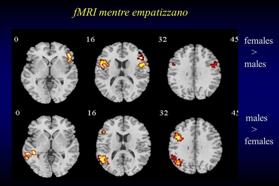 fMRI mentre empatizzano