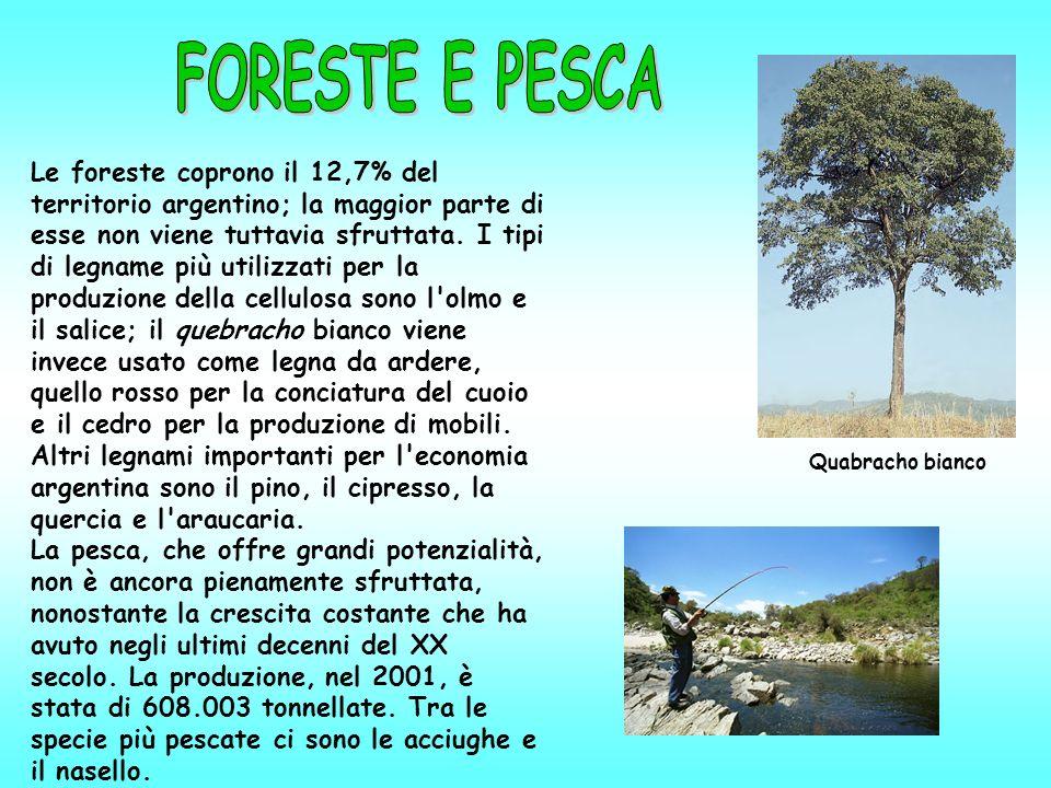FORESTE E PESCA