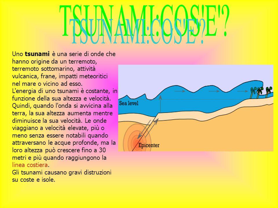 TSUNAMI:COS E
