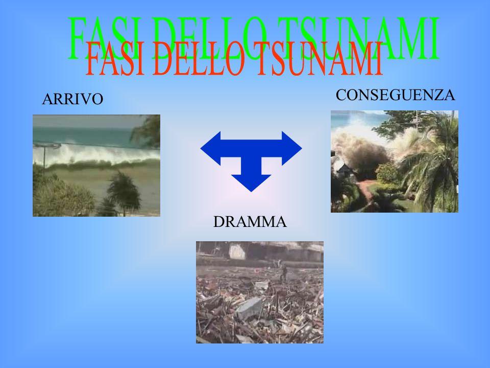 FASI DELLO TSUNAMI CONSEGUENZA ARRIVO DRAMMA