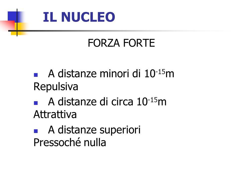 IL NUCLEO FORZA FORTE A distanze minori di 10-15m Repulsiva