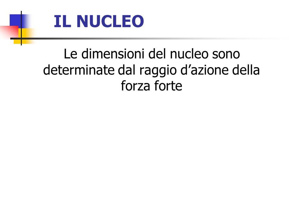 IL NUCLEO Le dimensioni del nucleo sono determinate dal raggio d'azione della forza forte