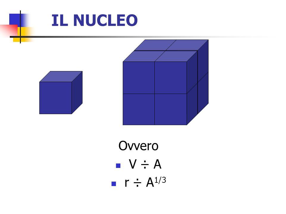 IL NUCLEO Ovvero V ÷ A r ÷ A1/3