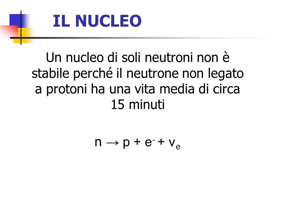 IL NUCLEO Un nucleo di soli neutroni non è stabile perché il neutrone non legato a protoni ha una vita media di circa 15 minuti.
