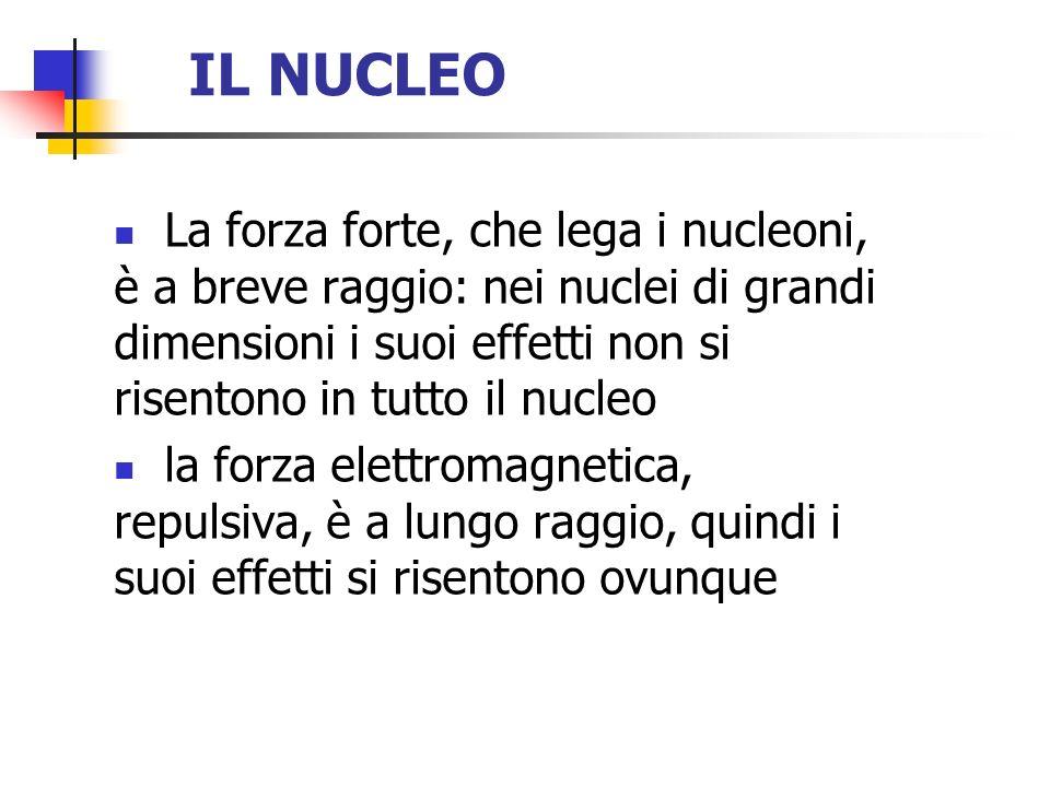 IL NUCLEO La forza forte, che lega i nucleoni, è a breve raggio: nei nuclei di grandi dimensioni i suoi effetti non si risentono in tutto il nucleo.