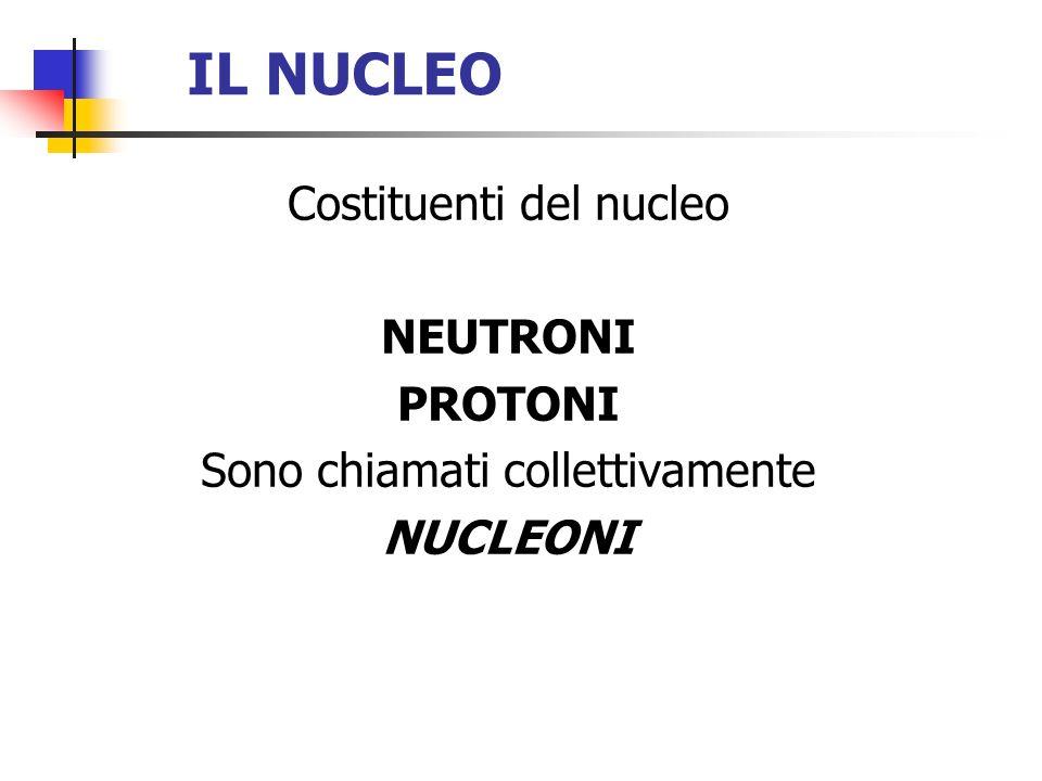 IL NUCLEO Costituenti del nucleo NEUTRONI PROTONI