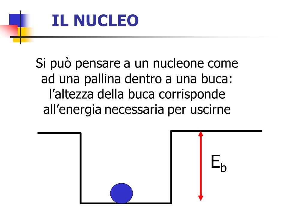IL NUCLEO Si può pensare a un nucleone come ad una pallina dentro a una buca: l'altezza della buca corrisponde all'energia necessaria per uscirne.