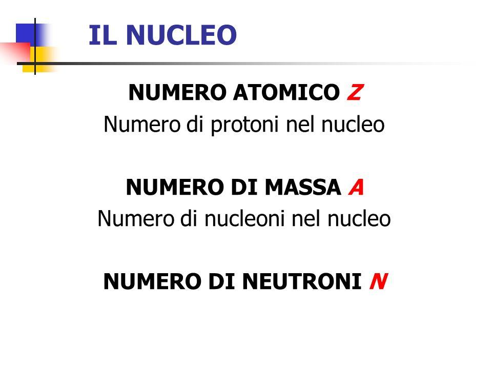 IL NUCLEO NUMERO ATOMICO Z Numero di protoni nel nucleo