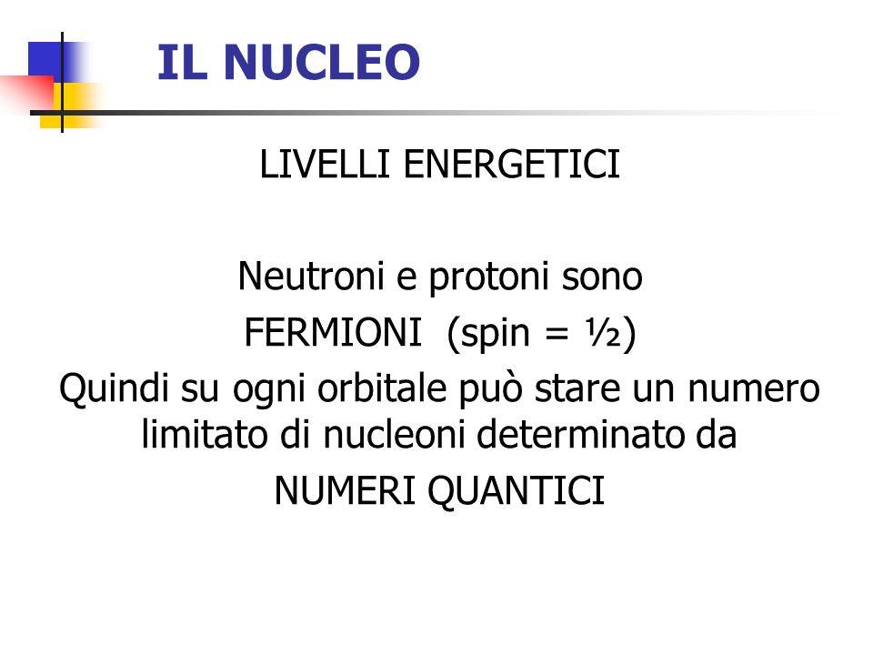 Neutroni e protoni sono