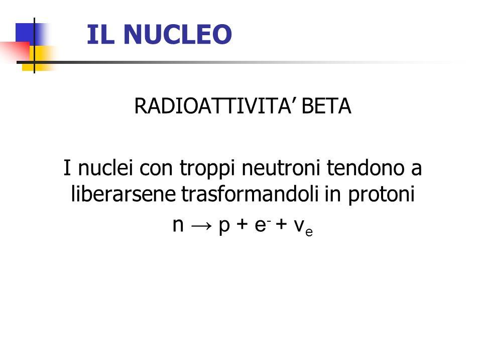 IL NUCLEO RADIOATTIVITA' BETA