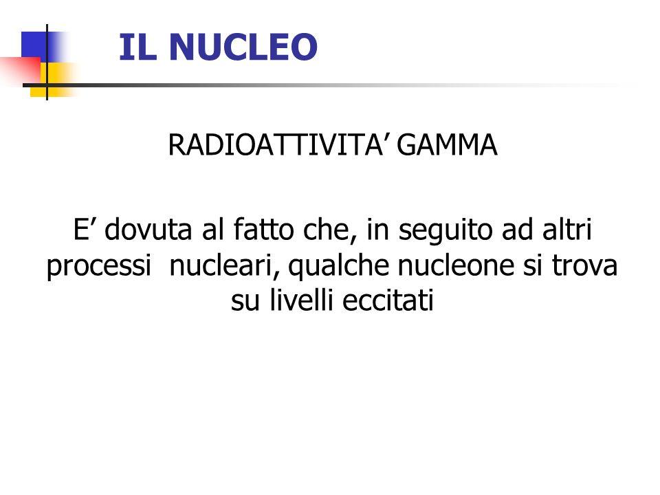 IL NUCLEO RADIOATTIVITA' GAMMA
