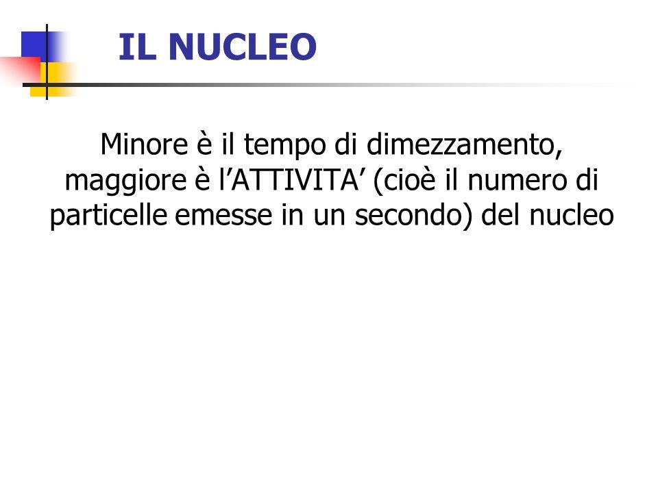 IL NUCLEO Minore è il tempo di dimezzamento, maggiore è l'ATTIVITA' (cioè il numero di particelle emesse in un secondo) del nucleo.