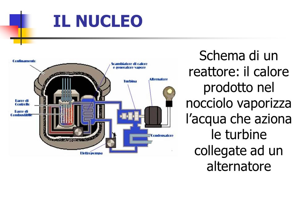 IL NUCLEO Schema di un reattore: il calore prodotto nel nocciolo vaporizza l'acqua che aziona le turbine collegate ad un alternatore.