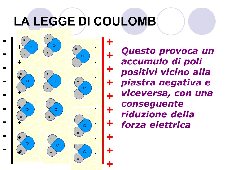 LA LEGGE DI COULOMB - + + -