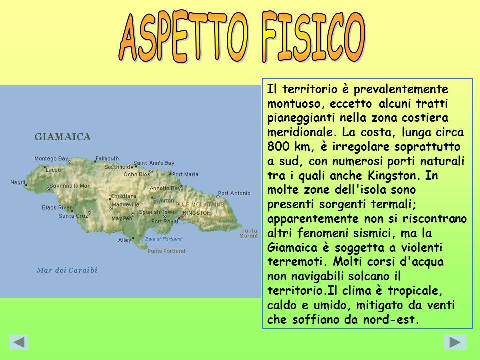 ASPETTO FISICO