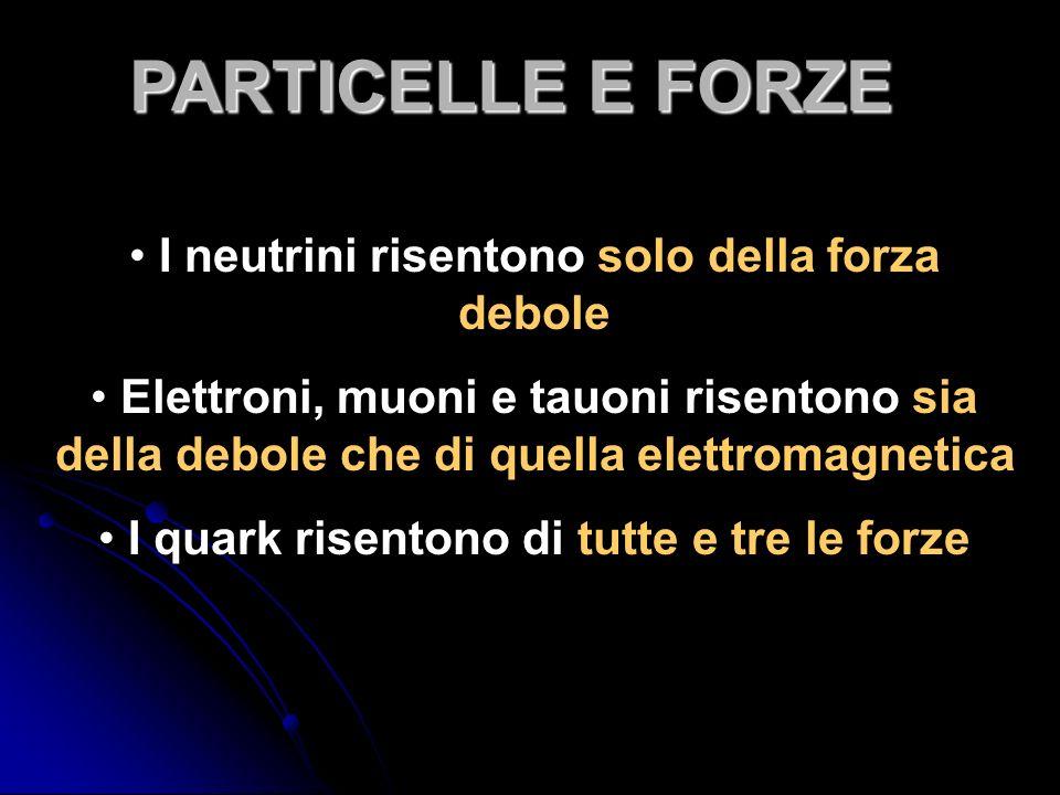 PARTICELLE E FORZE I neutrini risentono solo della forza debole