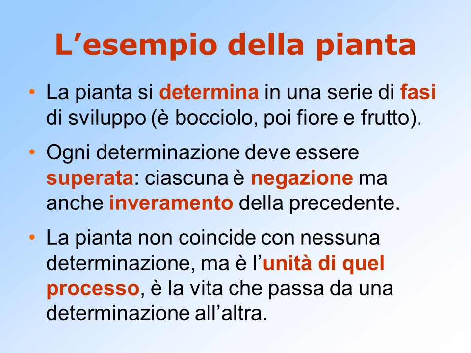 L'esempio della pianta