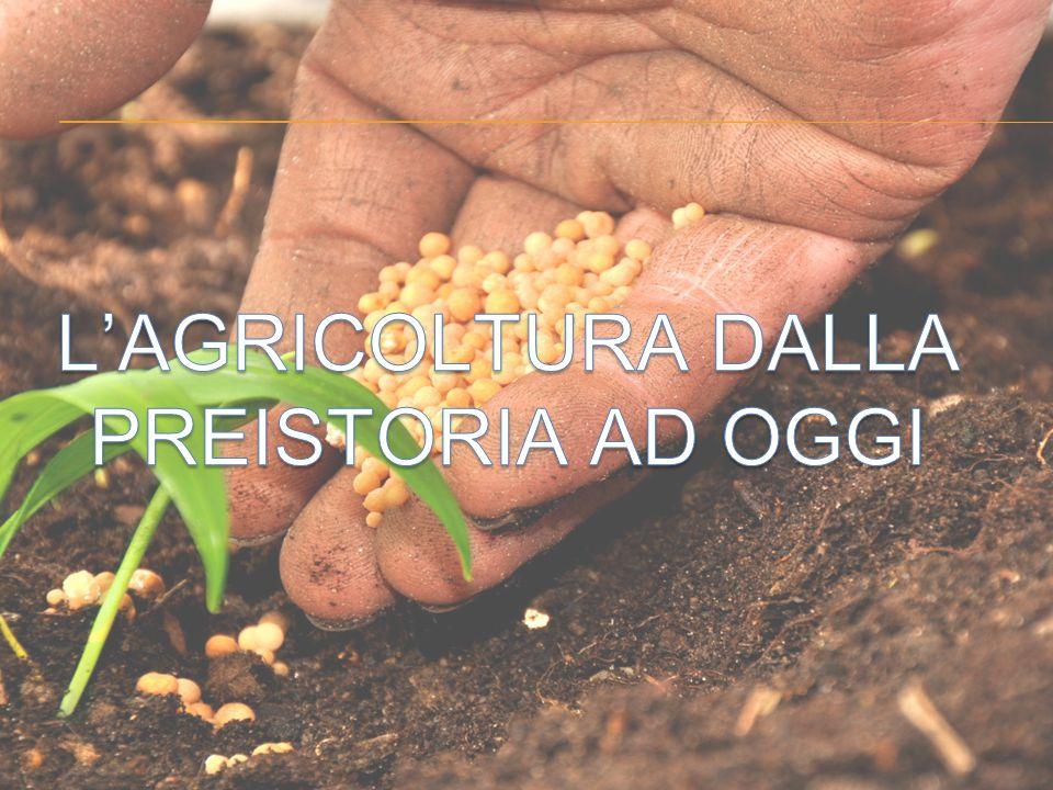 L'AGRICOLTURA DALLA PREISTORIA AD OGGI