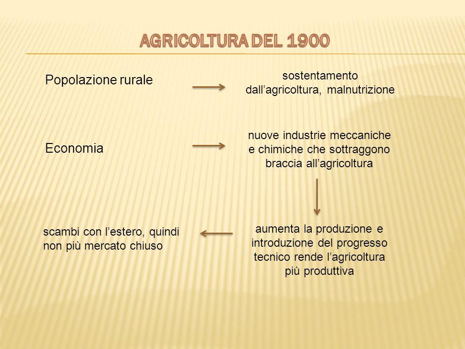 sostentamento dall'agricoltura, malnutrizione