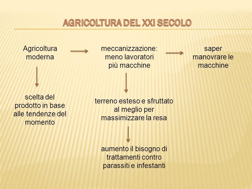 AGRICOLTURA DEL XXI SECOLO