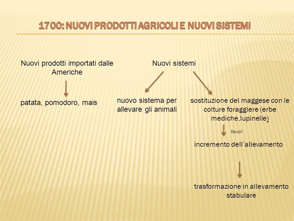1700: NUOVI PRODOTTI AGRICOLI E NUOVI SISTEMI